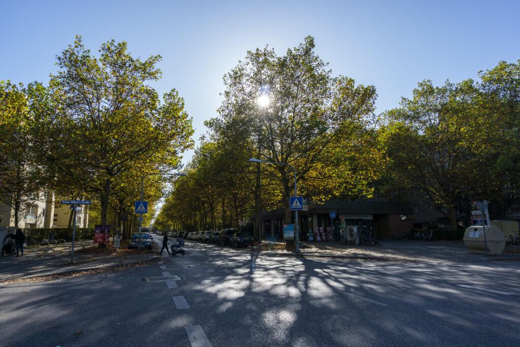 Осень в жилом районе