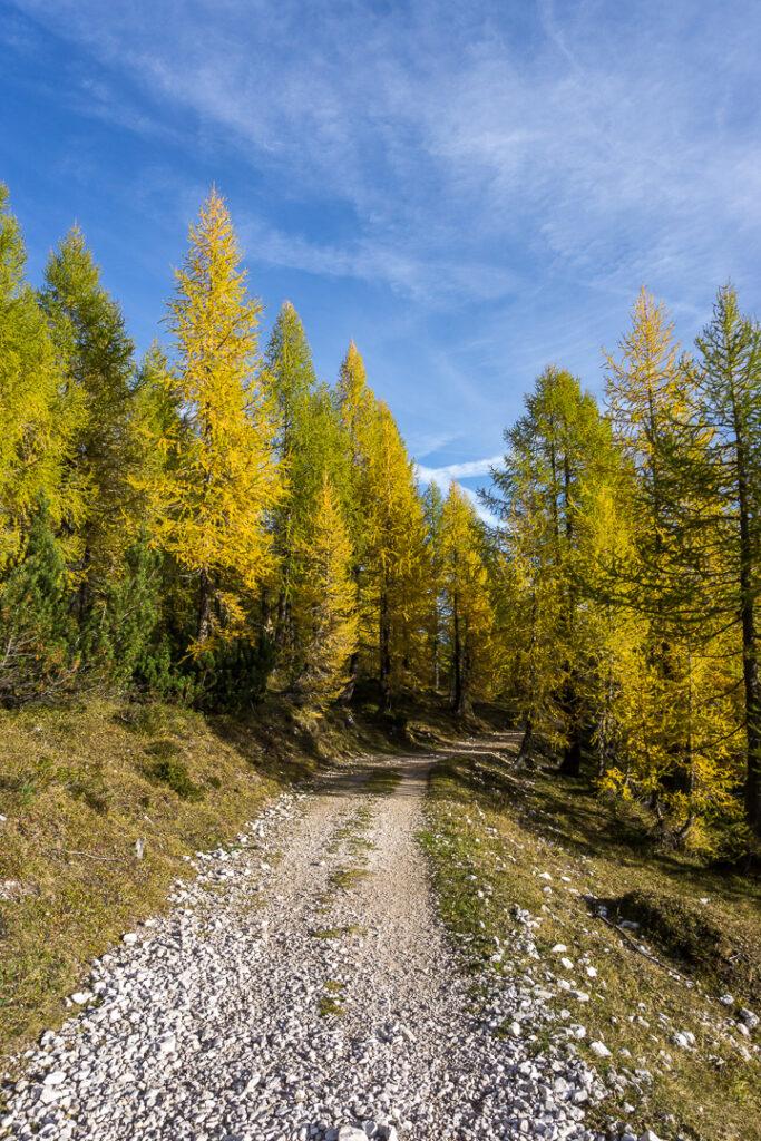 Путь в осень